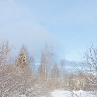 Зима :: Наталия Есина
