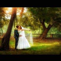 Свадебная сказка... :: Marina V.Art