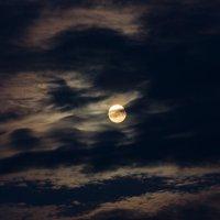 За облаками :: Alex Bush