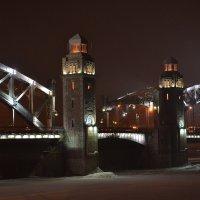 Башни Большеохтинского моста :: Наталья Левина