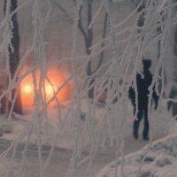 Морозное утро :: Валерий Талашов