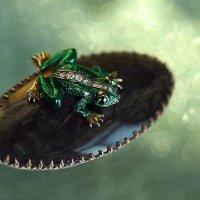 Лягушка - путешественница :: Ирина Виниченко
