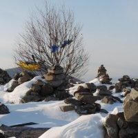 Байкальские башни :: Ася Довгополая