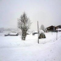 После снегопада :: Игорь Овчинников