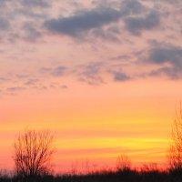 Редеет облаков летучая гряда.... :: Tatiana Markova