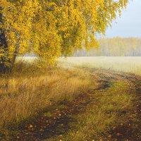 Люблю я пышное природы увядание.... :: Kassen Kussulbaev