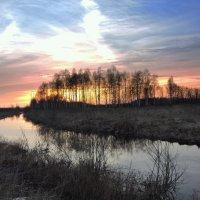 А лебедь белая по небу плавала . :: Hаталья Беклова