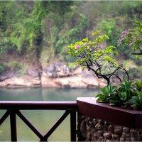 балкон :: yameug _