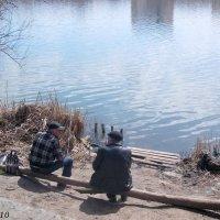 На берегу водохранилища :: Нина Бутко