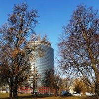 Городской пейзаж :: Ирина Олехнович