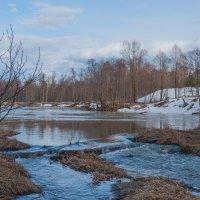 На реке Илеть :: Игорь Ильиных