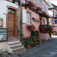 Эгишем является колыбелью лучших эльзасских вин. :: Anna Gornostayeva