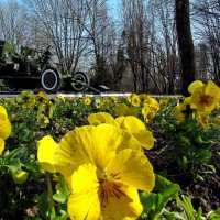 10.04 -день освобождения Одессы :: Александр Корчемный