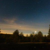 в свете Луны... :: Сергей Метальников