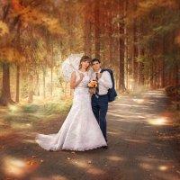 Осенняя сказка :: Дарья Суркина