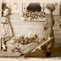 Тебе цветы! :: Белла Витторф