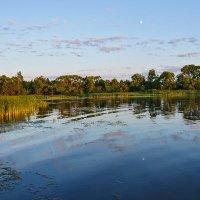 луна в реке купается :: Galina