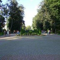 Главная  аллея  Ивано - Франковского  парка :: Андрей  Васильевич Коляскин