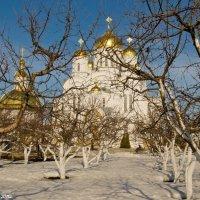 Сад перед Преображенским собором. :: Виктор Евстратов