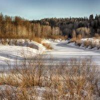 Снова весна.. :: Сергей Винтовкин