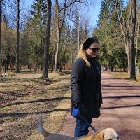 Собачий час в нашем парке - дело святое... :: Tatiana Markova