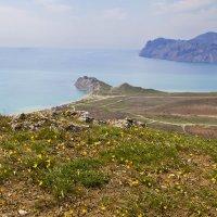 Весенний Крым :: Геннадий Валеев