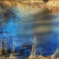 Тени на синем :: Ирина Сивовол