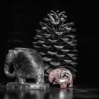 Слоненок :: Edgar Hakobyan