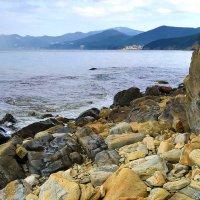 Нудистский пляж :: Виктор Масальский