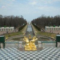 Немного весеннего несезонного Петергофа..)) :: tipchik