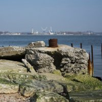 Балтийская коса. Вид на Балтийск. Фото 3 :: Александр Степовой