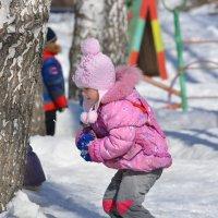 Снежок :: grovs