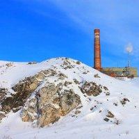 Среди снегов,среди зимы... :: Галина Стрельченя