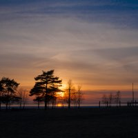 Закат на Финском заливе :: Валерий