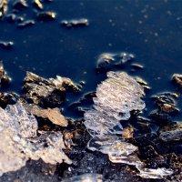 Лёд тает в холодной озерной воде :: ID@ Cyber.net
