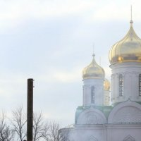 Масленица в Царском Селе :: Ирина Фирсова