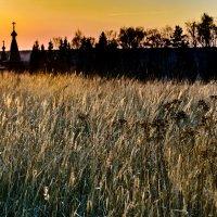 Золотой закат :: Павел Кочетов