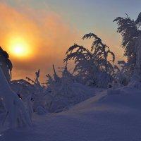 Оранжевый туман :: Василий Хорошев