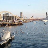 Порт Барселоны :: Irina @