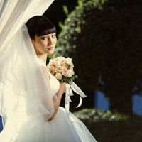 красивые невесты :: Кристина Глова
