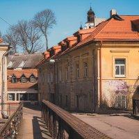 Vilnius walking :: Alena Kramarenko