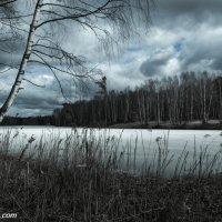 Весна. :: Валерий Смирнов