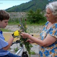 Урок ботаники. :: Anna Gornostayeva