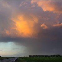 история дождя... предистория радуги )) :: Райская птица Бородина