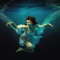 Wings :: Дмитрий Лаудин