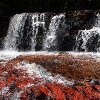 Яшмовый каньон в Венесуэле :: Михаил Бибичков
