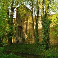 Старые стены и ..новая жизнь :: Galina Dzubina