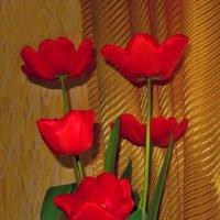 Тюльпаны :: Наталья (D.Nat@lia)