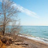 черное море... :: Марина Брюховецкая