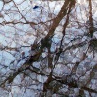мозаика апреля :: tgtyjdrf